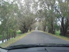 Baldivis country lanes