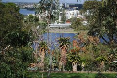 KINGSPARK  VIEWS