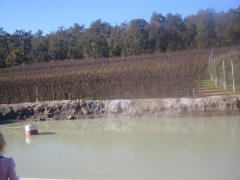 Perth hills .. the orchards in winter .  water hole ..
